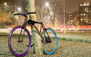 bicicleta-arbol-efe-verde