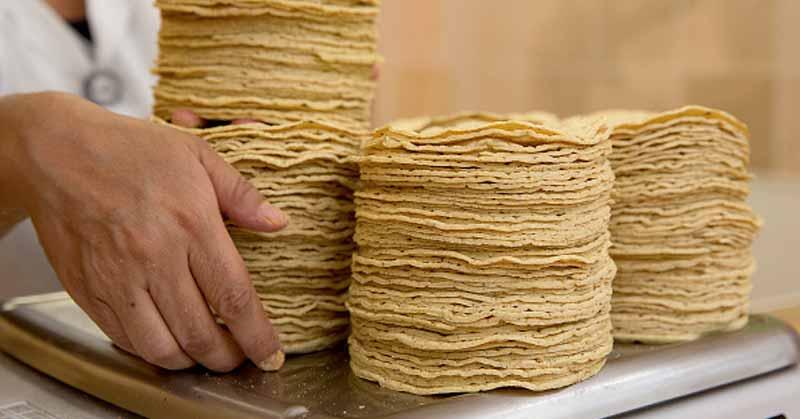 Alertan alza en el precio de tortillas 4