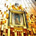 A fin de evitar aglomeraciones y contagios de Covid-19, la Basílica de Guadalupe permanecerá cerrada del 10 al 13 de diciembre 5