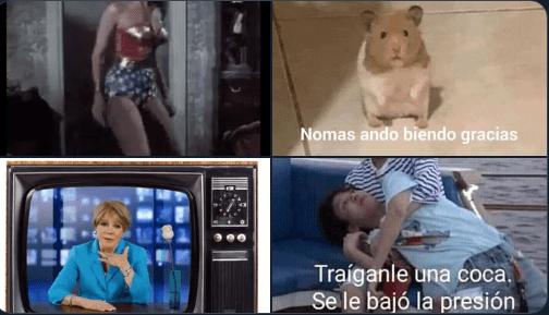 Lolita Ayala anuncia playera de Phil Barrera con video y las redes enloquecen (mejores memes) 1