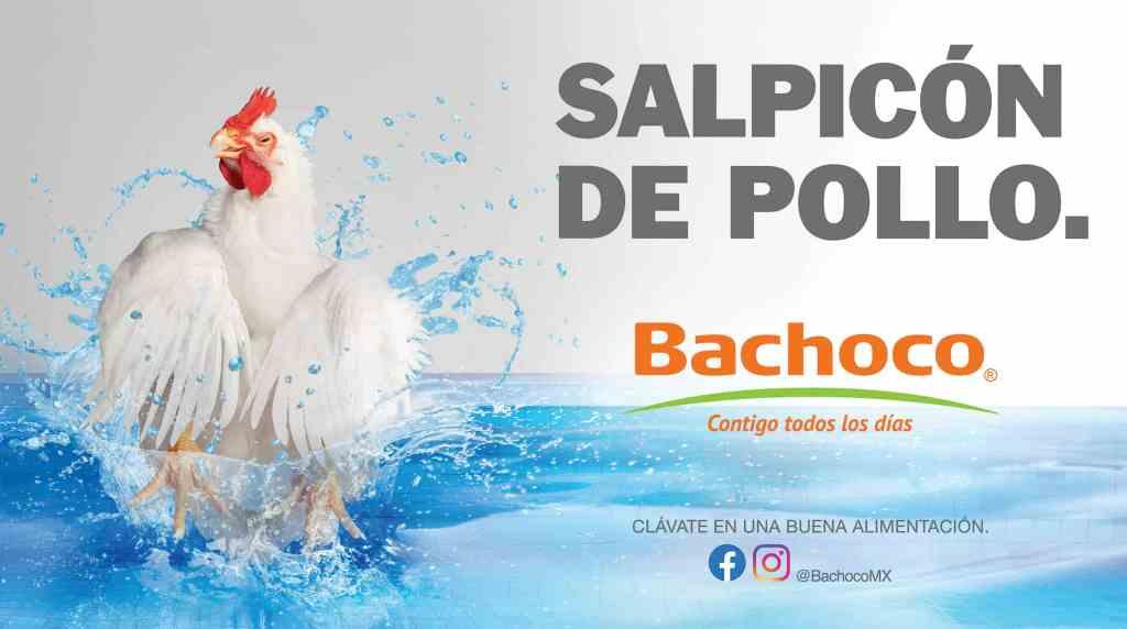 """Con """"Pollo a la poblana"""", Bachoco se vuelve tendencia en redes sociales. 4"""