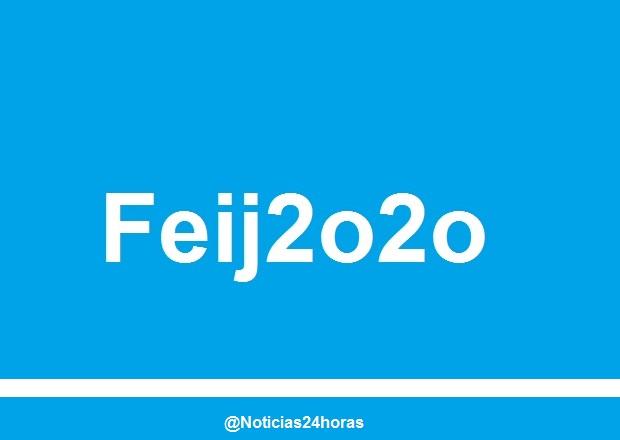 feijoo_2020