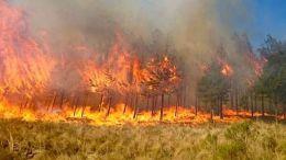 incendio-Bolivia
