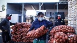 Cebollas en mercado argentino
