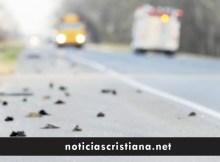 miles de aves migratorias caen al suelo en eeuu