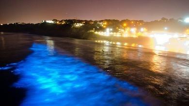 1814fb497784122f4f25346aec515b43 - Una misteriosa luz azul aparece en playas de California