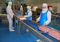 67fe64e2f26a1adfd23a6bb5094d9921 - Matadero en Rumania: No solo los supermercados tienen carne de caballo si no tambien podrian tener de burro