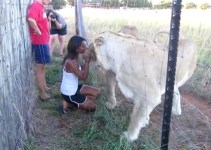 dfd56ec516270ddb1a6acdd0b88948d4 - La mujer que besa a los leones