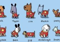de0f35b52d3302946ab2bac4ac1069ae - Homenaje a todos los perros soviéticos que viajaron al espacio