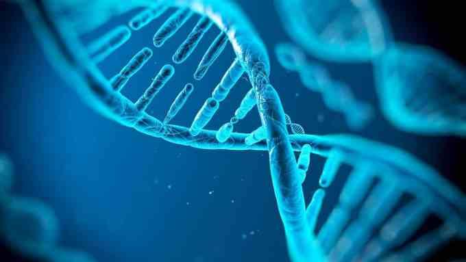 e06663d1ffd0ec6a5f2101322976d268 - Los españoles son los europeos con más genes del Magrebís