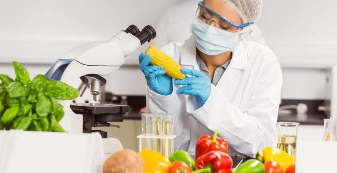 2 1 - ¿La Tecnología Nos Acompaña Al Momento De Comer?