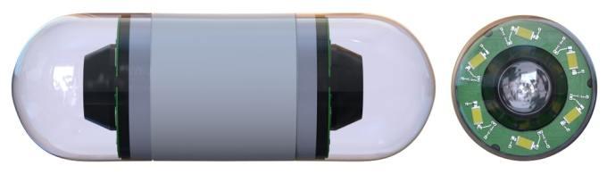 capsula de endoscopia