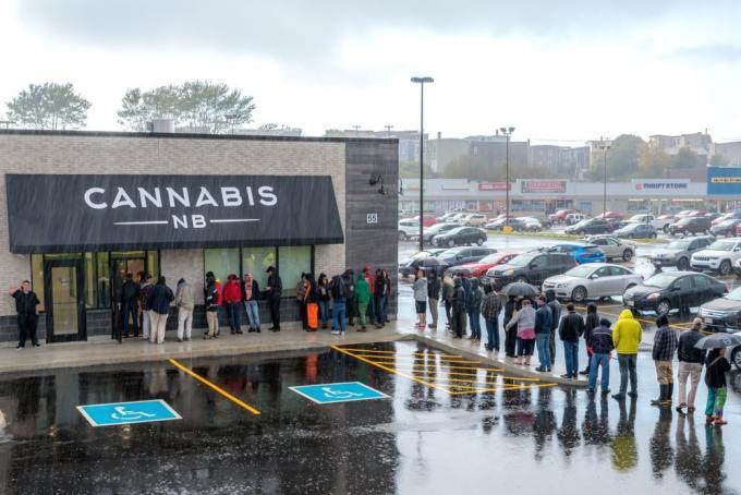 """Cannabis paises legal - Todo lo que tienes que saber sobre """"El Cannabis"""""""