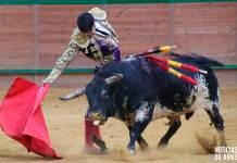 Novillero Francisco de Manuel con el novillo 'Gorrillo' de la ganadería Fernando Peña en el Arnedo Arena