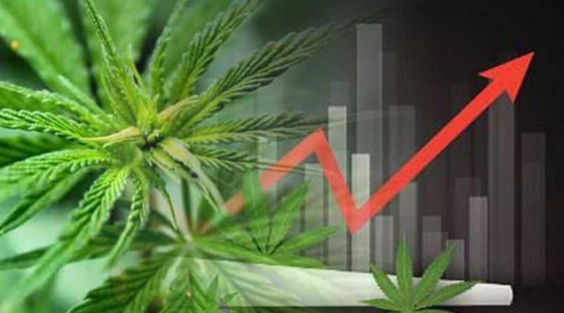 Se desinfla la marihuana en Wall Street