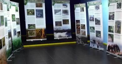 Exposición Navelgas