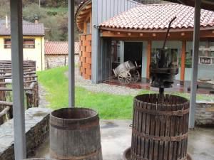 Museo del Vino en Cangas del Narcea