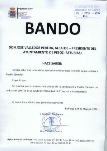 Bando Pesoz02