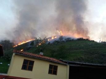 Incendio Allande