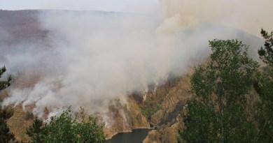 Incendio Grandas de Salime