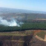 La BRIF de Tineo trabaja en un incendio en Morentán, en Ibias