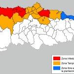 El Principado actualiza las zonas infestadas por la polilla guatemalteca de la patata