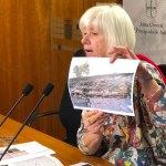 IU alerta del riesgo del proyecto en marcha para el castro del Chao San Martín