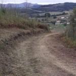 Tineo invierte 150.000 euros en mejoras de montes públicos y lucha contra incendios