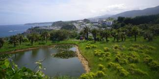 Jardines de la Fonte Baixa