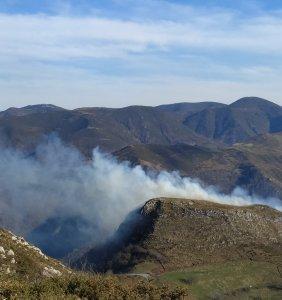 Agentes de Medio Natural identifican al presunto autor de un incendio en Belmonte de Miranda 1