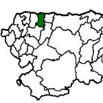 Coaña COVID19