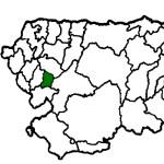 Pesoz COVID19