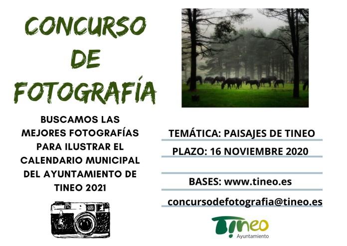 Tineo Cartel Concurso Fotografía