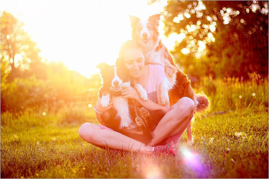 jolly-vicky2 Noticias de perros - Inicio