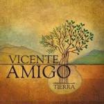 Concierto musical de Vicente Amigo en Salamanca 2015