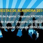 Fiesta de la Almendra 2015