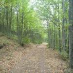 Las 10 rutas primaverales Sierra de Francia 2016