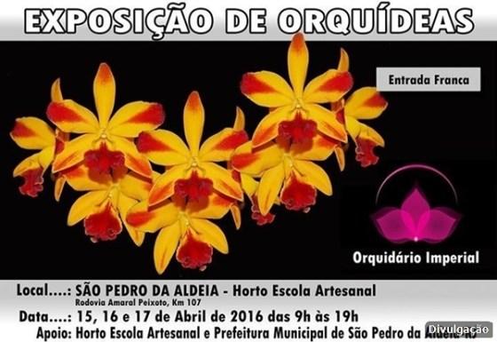 Horto Escola Artesanal realiza exposição de orquídeas