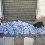 AÇÕES POLICIAIS – Carga com mais de 18 mil cápsulas de cocaína é apreendida em Cabo Frio