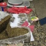 AÇÕES POLICIAIS – PM apreende 1,5kg de maconha em casa usada para venda em Arraial