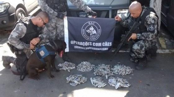 Maconha foi encontrada com com a ajuda de cães no Manoel Corrêa