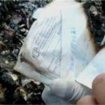 REGIÃO DOS LAGOS – Fiscais do TRE acham remédios e receitas queimadas em Búzios