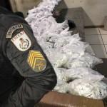 AÇÕES POLICIAIS – Polícia apreende maconha e cocaína após trocar tiros com bandidos na RJ-124, em São Pedro