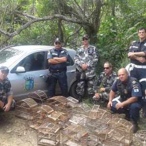 SÃO PEDRO DA ALDEIA – Animais silvestres resgatados são devolvidos à natureza pela Guarda Ambiental de São Pedro da Aldeia