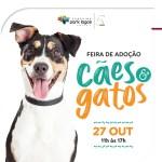 CABO FRIO – Animais resgatados estarão para adoção em Cabo Frio neste sábado (27)