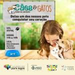 REGIÃO DOS LAGOS – Cerca de 30 animais estarão disponíveis para adoção neste sábado (27) no Park Lagos