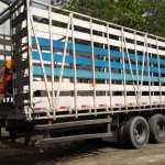 CABO FRIO – Prefeitura destina 9 toneladas de pneus para reciclagem