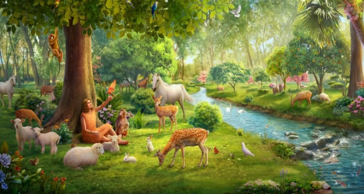 CIÊNCIA & FÉ - a importância do cuidado e da relação do cristão com a natureza