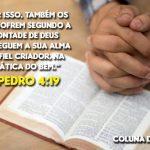 COLUNA DO EDU – Confiança em Deus em tempos de pandemia