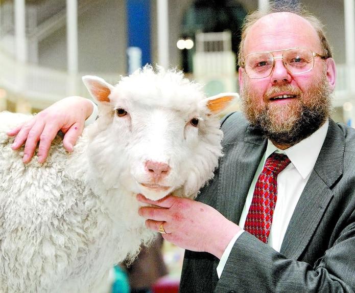 La famosa oveja nació el 5 de julio de 1996 y fue el primer mamífero clonado a partir de células adultas gracias a una técnica ideada por Ian Wilmut y sus colegas del Roslin Institute de Edimburgo.